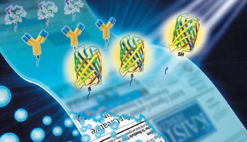 Biomedical sensors for disease detection made simple