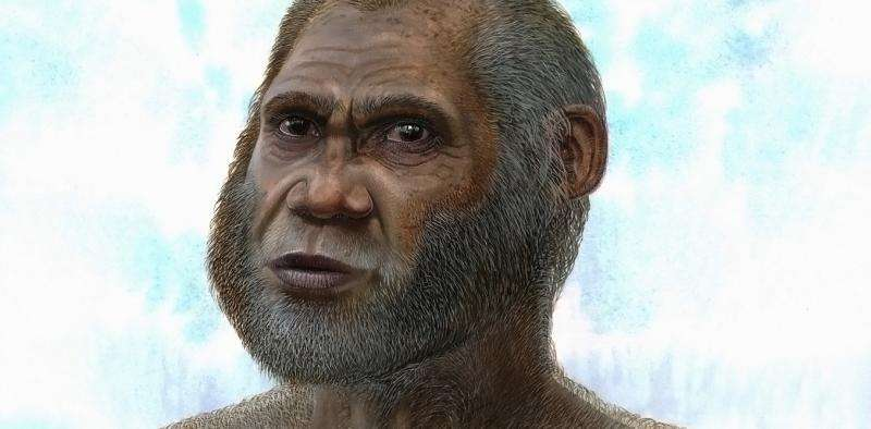 Bone suggests 'Red Deer Cave people' a mysterious species of human