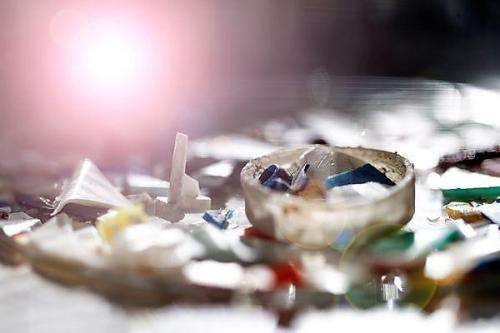 Case study of microplastics in the ocean