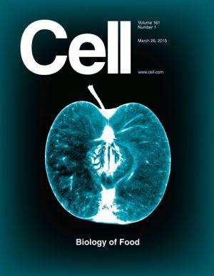Cell celebrates intersection of food and science in special issue