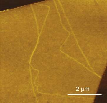 Channeling valleytronics in graphene