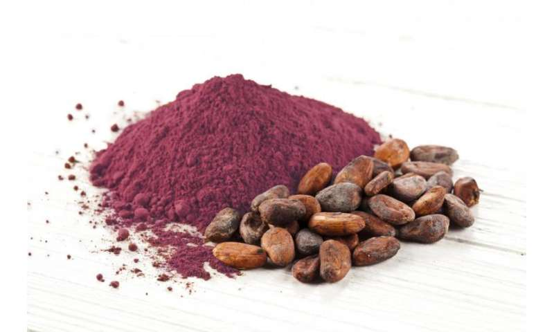 Cocoa flavanols lower blood pressure and increase blood vessel function in healthy people