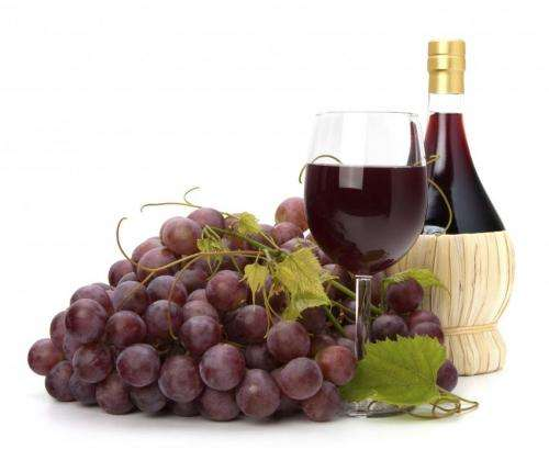 Compound found in grapes, red wine may help prevent memory loss