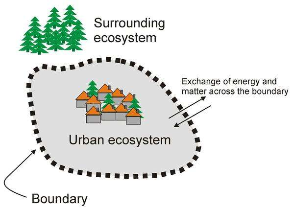 Could urban disorder give way to sustainability?