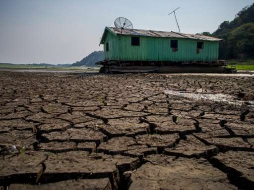 Cracked soil sits on the bed of the Aleixo Lake in the Amazonas, Brazil, on October 23, 2015 as the region suffers a severe drou