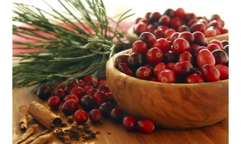 Cranberry juice helps ward off common infection