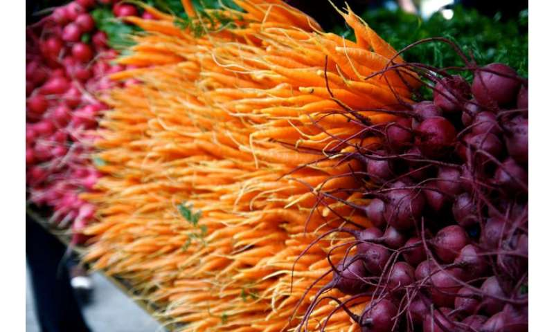 Credit cards a valuable option for farmers' markets