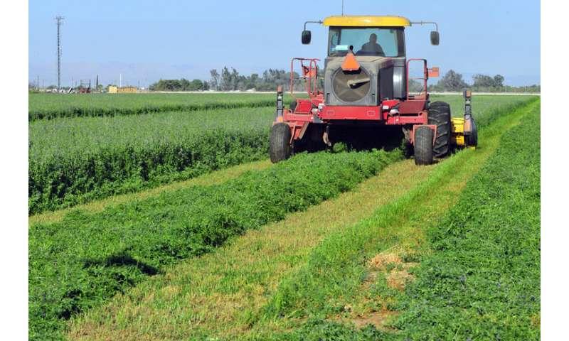 Crop adjustments may lessen climate change's economic effects, economist says