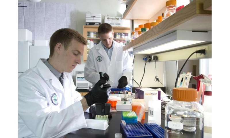 Diabetic researchers pinpoint gene key to reactivating insulin-producing beta cells