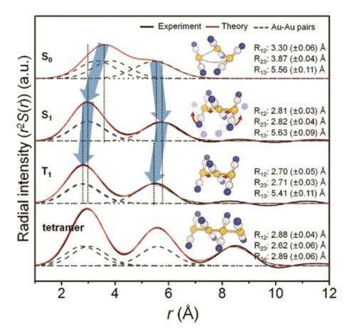 Direct observation of bond formations
