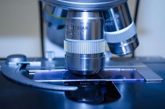 Discovery targets dormant bowel cancer cells before they form secondary tumours