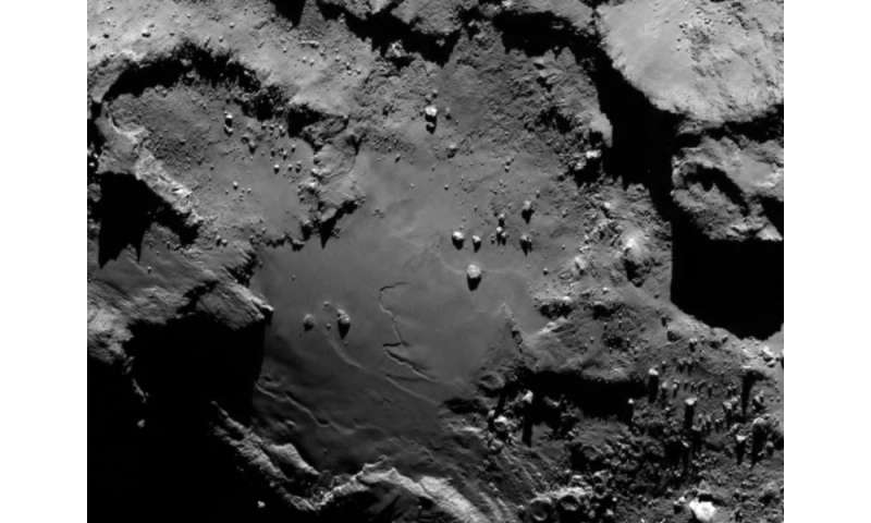 Do micro-organisms explain features on comets?