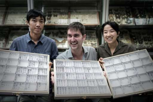 Dr Benoit Guenard (C), Assistant Professor at the HKU School of Biological Sciences, and his team members display ant species at