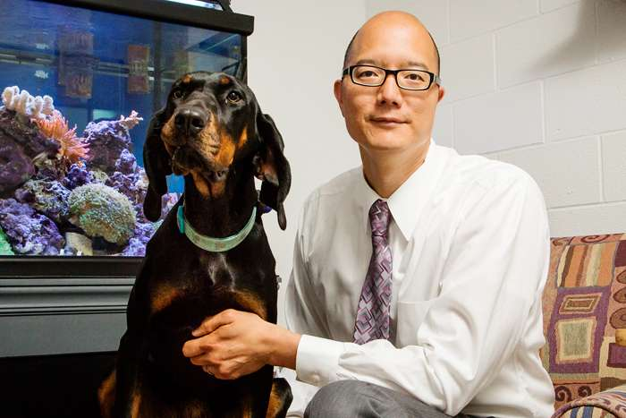 Drug trials in pet dogs with cancer may speed advances in human oncology