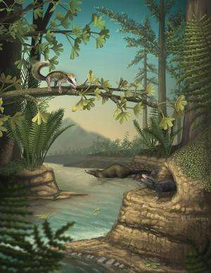 Earliest-known arboreal and subterranean ancestral mammals discovered