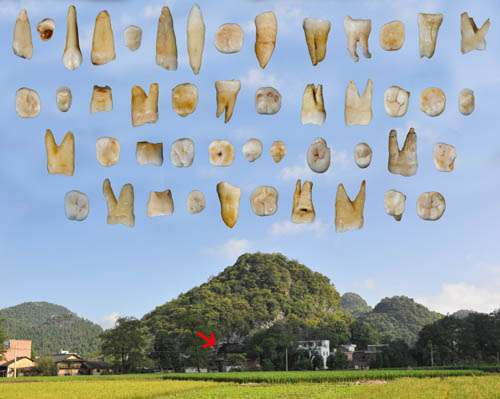 Earliest modern humans in Southern China recast history of early human migration