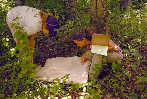 Ecologist tracks tick-borne diseases beyond their usual borders