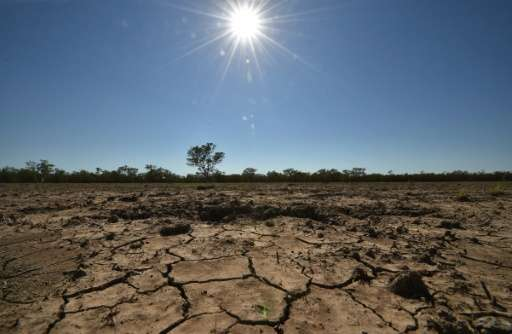 El Nino, a global weather pattern that periodically wreaks havoc, is expected to last until early 2016, leaving some parts of th