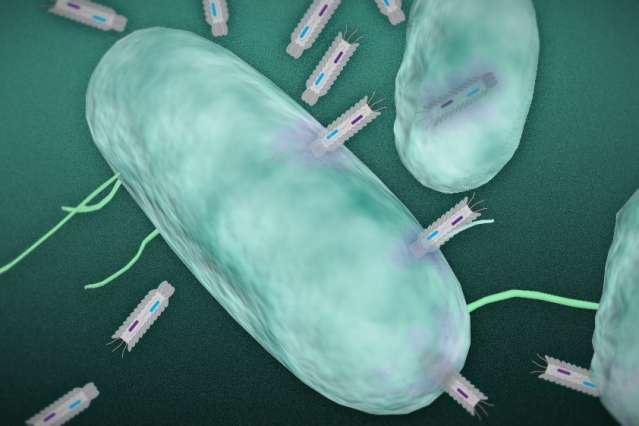 Engineered particles produce toxins deadly to targeted bacteria