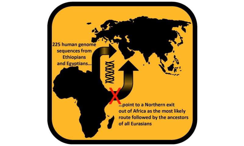 Ethiopian and Egyptian genomes help map early humans' route out of Africa