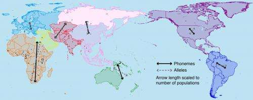 Features of language show a strong link to the geographic dispersal of human populations