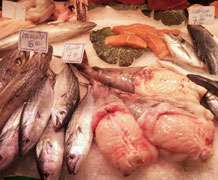 'Fish fraud' across Europe in decline, study shows