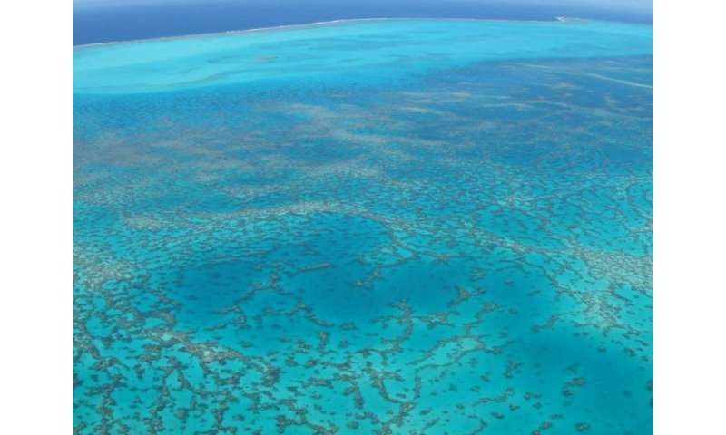fish will have to find new habitats or perish if global