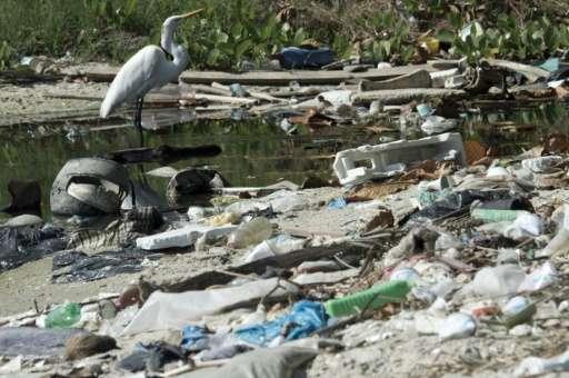 Garbage is seen on the Guanabara Bay, in Rio de Janeiro, Brazil, on June 10, 2015