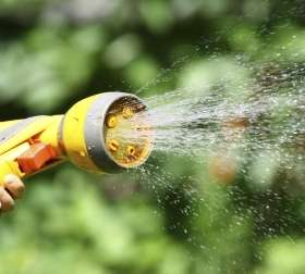 Garden hose a breeding ground for Legionnaires' disease