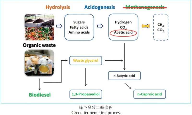 Green fermentation process from waste feedstock to high value chemicals