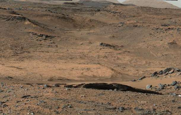 Hardy bacteria thrive under hot desert rocks