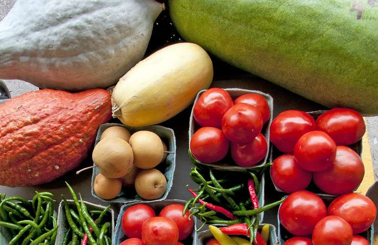 Healthy Choices program for middle schoolers helps reduce obesity, encourage healthy habits