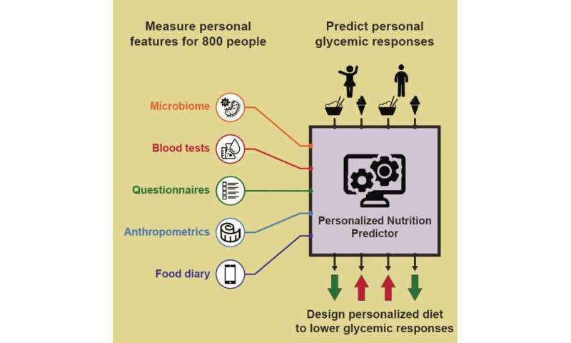 'Healthy' foods differ by individual