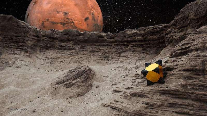 """Hedgehog"" robots hop, tumble in microgravity"