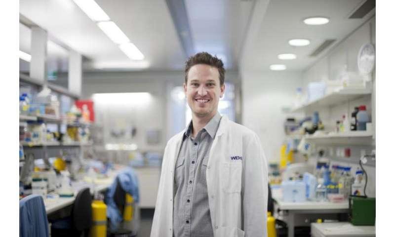 'Hijacking' and hibernating parasite could alter brain behavior
