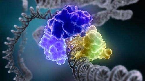 How DNA alarm-system works