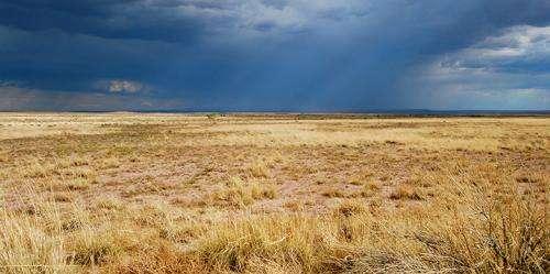 How rain is dependent on soil moisture