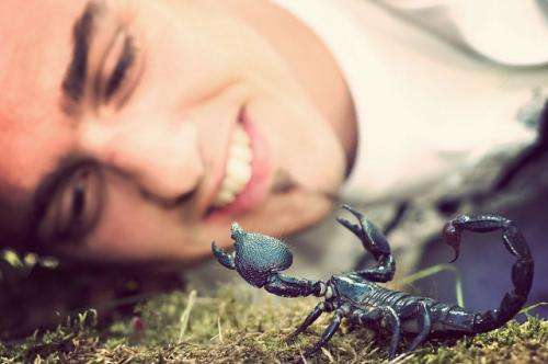 How scorpion venom could yield new cancer treatment
