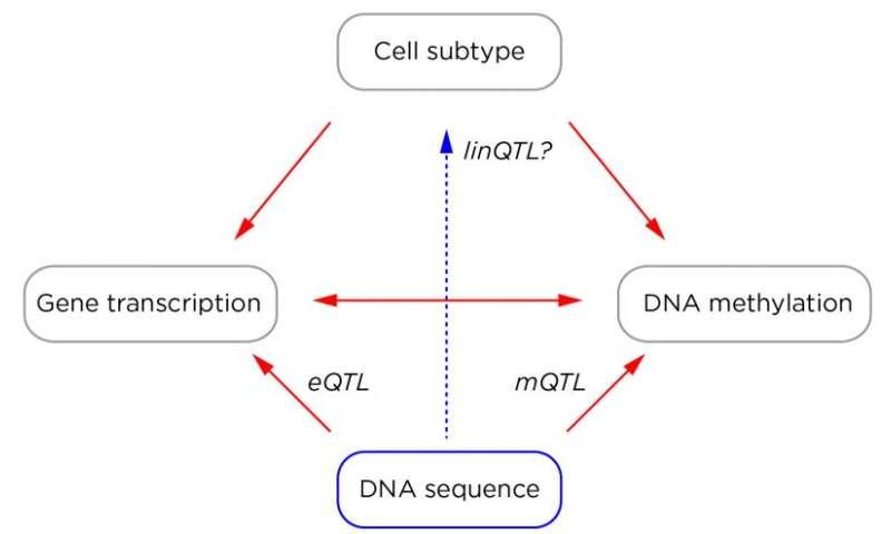 Human disease epigenomics 2.0