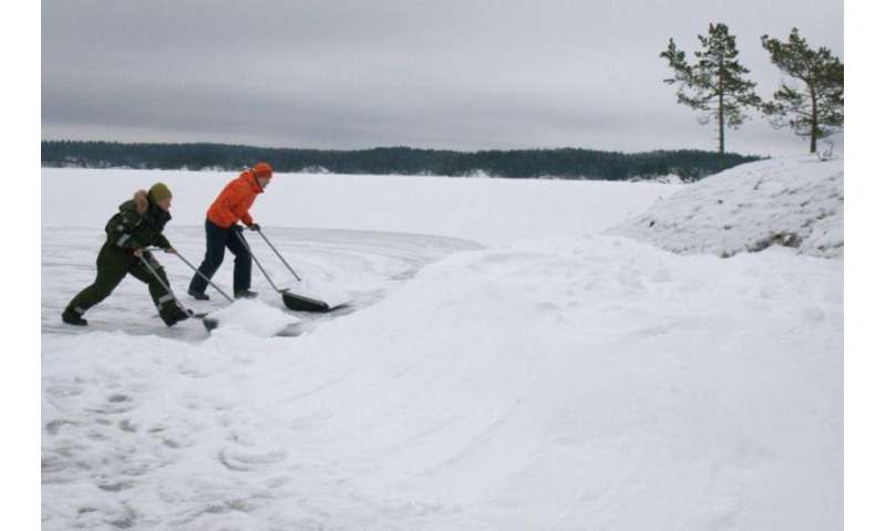 Human intervention can help endangered Saimaa ringed seal adapt to climate change