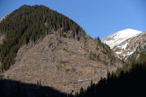 Illegally deforested mountains in Pojarna Valley, in the heart of the Romanian Carpathian Mountains, on January 16, 2014