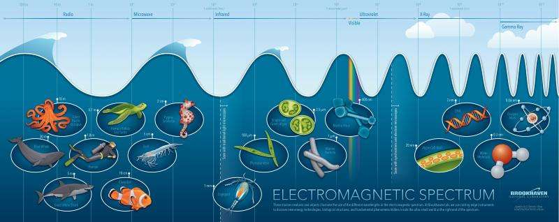 Image: Into the depths of the electromagnetic spectrum