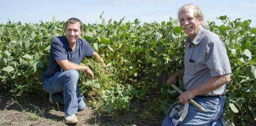 Improved soil condition increases moisture for crops