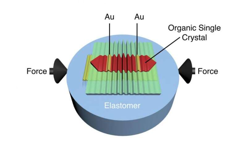 Improving organic transistors that drive flexible and conformable electronics