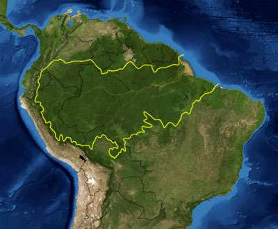 Increased deforestation could substantially reduce Amazon basin rainfall