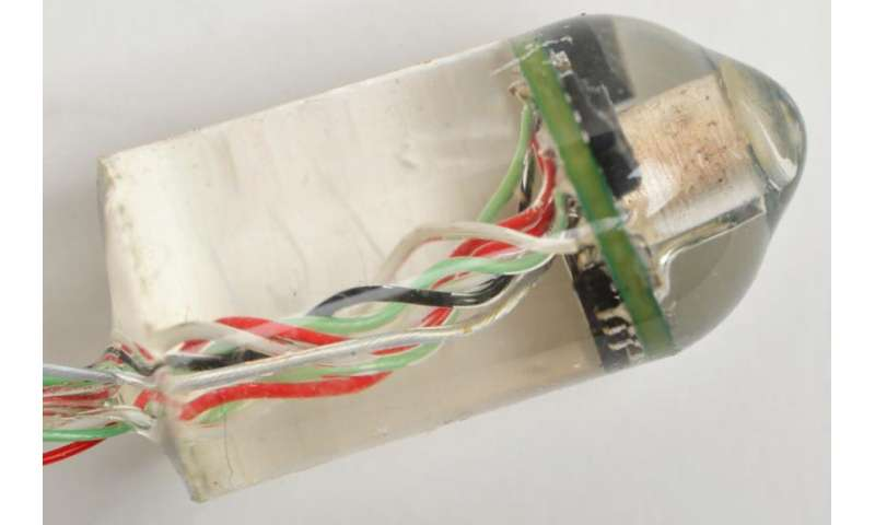 Ingestible sensor measures heart and breathing rates from within the digestive tract (w/ Video)