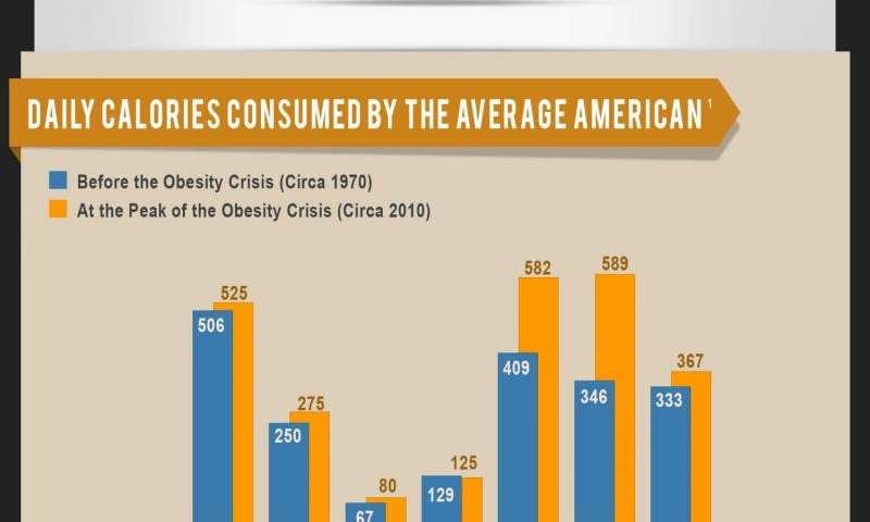 Is junk food to blame?