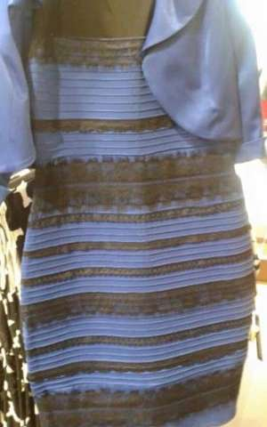 Is #TheDress white and gold or blue and black? Rice expert on visual perception weighs in