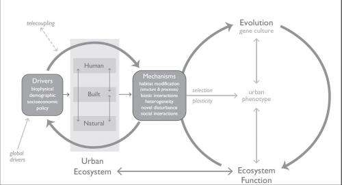 Is urbanization pushing Earth's evolution to a tipping point?