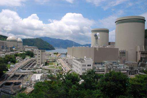 Kansai Electric Power Co (KEPCO) Takahama nuclear plant, pictured in Fukui prefecture, western Japan, on June 27, 2013